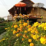 Tulip Resort Pai, Pai