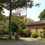 Agriturismo il Prato,  Palaia