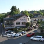 Hotel Pictures: Hotel Am Tiergarten, Nürburg