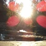 La Poza del Pato, Tarija