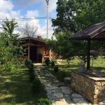 House Fruit Garden, Yuzhnaya Ozereyevka