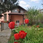 Holiday Home Vilata, Kŭrdzhali