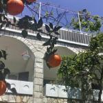 House Orange Apartments,  Herceg-Novi