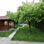 Apartment Adice, Novi Sad