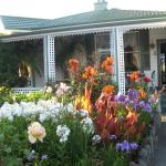 Mission Grange B & B, Napier