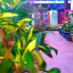 Moon Plain Inn,  Nuwara Eliya