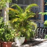 The Bike House, Rio de Janeiro