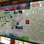 ZhangJiaJie Treehouse Inn,  Zhangjiajie