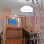 Grand Apartment in Downtown Pilsen/McCormick Place/UIC, Chicago