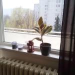 Apartman Sandra, Banja Luka