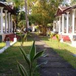 Alleppey Homes, Alleppey