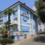 Hotel Pictures: Piccolo Hotel, Locarno