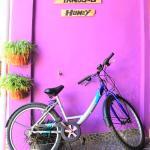 Tanjung Homey,  Yogyakarta