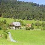 Hotel Pictures: Blumbauernhof, Gutach