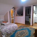 House with 3 apartments in the city center, Vinnytsya