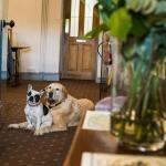 West House Country Hotel,  Llantwit Major
