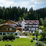 酒店图片: Märchenhotel Waldpension Nebelstein, Harbach