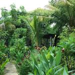 Yellow Coconut Homestay, Gili Trawangan