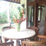 Palm House,  Ubud