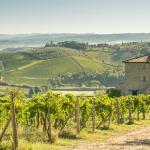 Agriturismo Il Casolare Di Bucciano,  San Gimignano