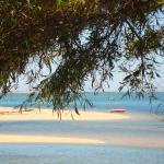 Parque de Campismo Orbitur Ilha de Armona, Olhão