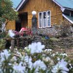 Cherry Village Resort, Pelling