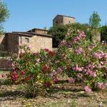 Farm Stay Antico Borgo.1,  Casa Lappi