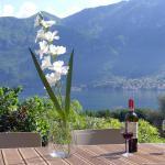 Bellagio Lake View Villa, Oliveto Lario