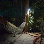 Roots Hostel, New Delhi