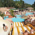 Hotel Pictures: Camping Les Palmiers, Hyères
