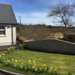Clare Forest Cottage, Ballycastle