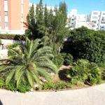 Il Tasso Rosso, Lecce