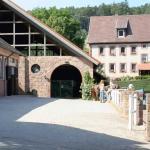 Freestyle Ranch Gestuet Rossbach,  Steinbuch