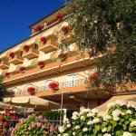 Hotel Pace, Torri del Benaco