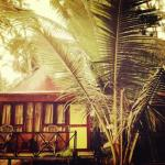 Over The Moon Beach Resorts,  Palolem