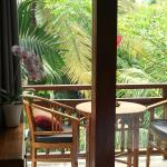 Cito Guesthouse, Ubud