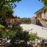 Bed and breakfast Le Camelie,  Alghero