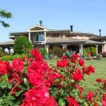 Villa Giusy B&B, Cesena