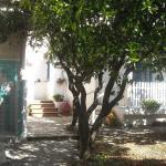 Gigia's House, Palinuro
