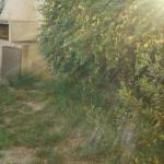 Pleiadi, Capoterra