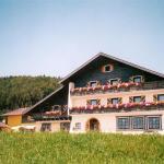 Hotel-Garni Pfandlwirt, Munderfing