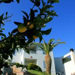 Aigli Apartments, Néa Ankhíalos