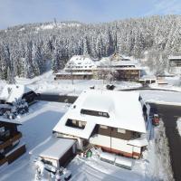 Hotelbilleder: Großes Apartment inkl Skipass, Feldberg