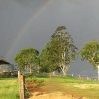 Hotel Pictures: CBR Equine Cottage, Amamoor