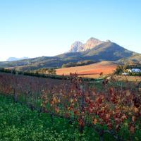 Zdjęcia hotelu: Marianne Wine Estate, Stellenbosch
