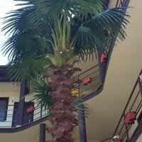 Фотографии отеля: Гостевой дом «Родительский очаг», Анапа