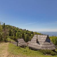 酒店图片: Chalet Zlatica Velika Planina, Stahovica
