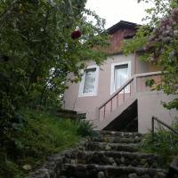 Hotellikuvia: House Ilia, Makhinjauri