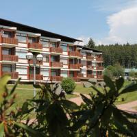 Hotel Pictures: Ferienhaus Schluchsee, Schluchsee