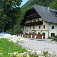 Hotel Pictures: Gasthof Steinbräu, Faistenau